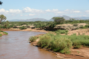 The Ewaso Nyiro River in Shaba National Reserve