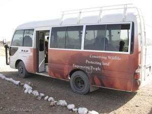 We took the kids to the parks on AWF's newly acquired bus. Help us think of a fun name for the bus.
