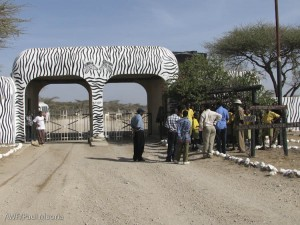 Arriving at the Ngare Mara gate of Buffalo Springs National Reserve. Check out that Grevy's paint job!